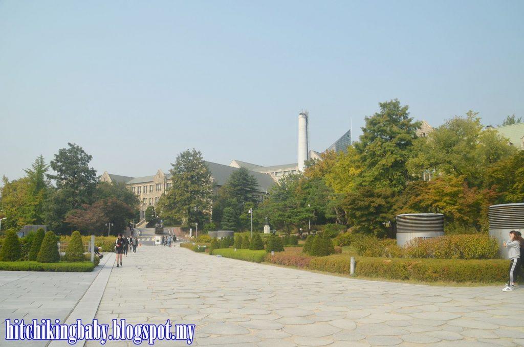 ewha-university-trees-scenery