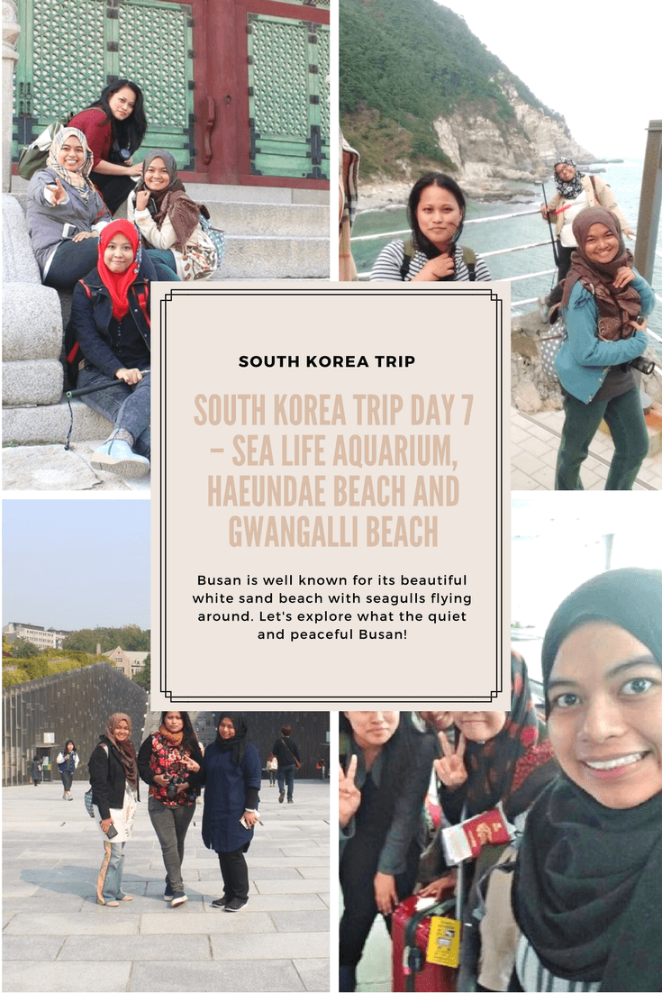 South Korea Trip 2016 Day 7 – SEA Life Aquarium, Haeundae Beach and Gwangalli Beach